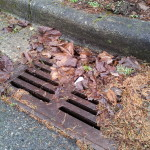 Water & Sewer Backup Portland, OR Insurance Agent