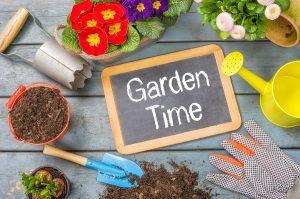 How to prepare a home garden in Beaverton, OR