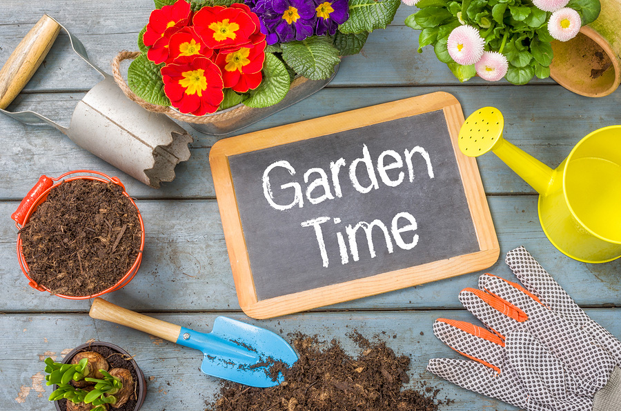 How to prepare a home garden in Portland, OR